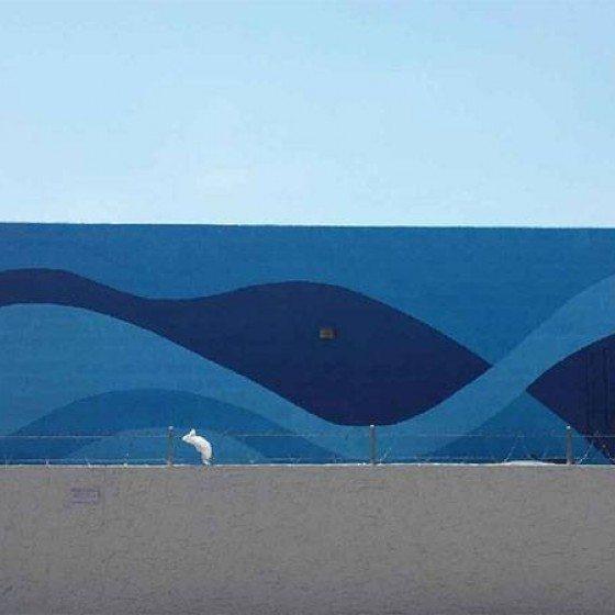 Phoenix Car Wash Exterior Painting | Phoenix Painting | Commercial Painting Project | Commercial Exterior Painting | Arizona Painting Company