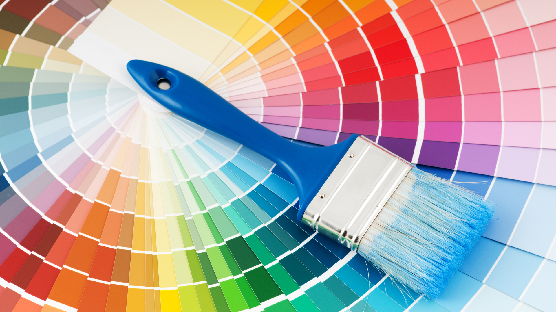 a color sample wheel laid out with a paint brush